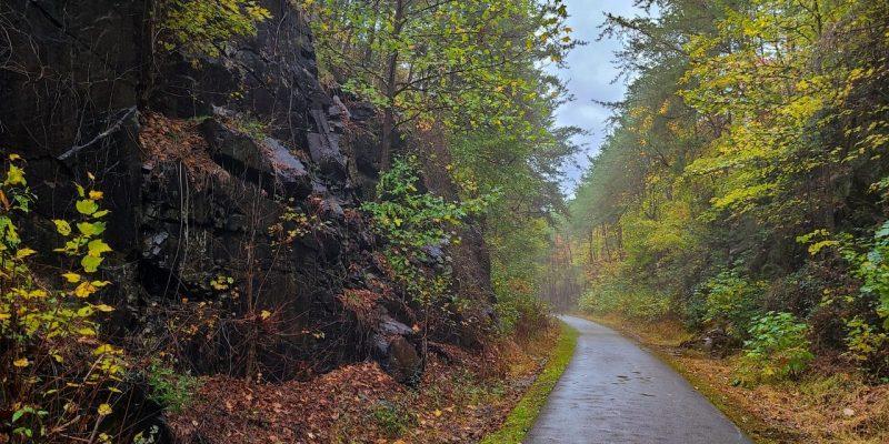 ladiga-trail